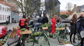 Cykelhaver