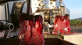 fontana di vino