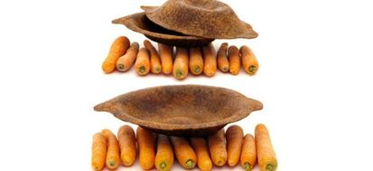 foodscap
