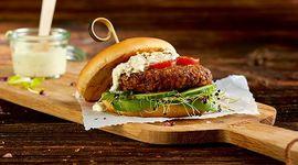 hamburger insetti