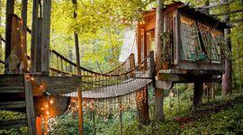 piemonte case tra gli alberi