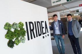 Gruppo ICA: la nuova vernice biologica è realizzata con scarti vegetali!