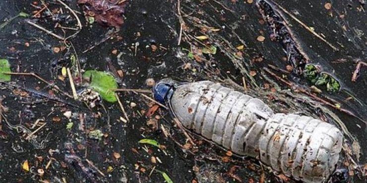 Minerv Biorecobery, la bioplastica che pulisce il mare