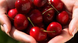 Buone e sane: 8 benefici delle ciliegie