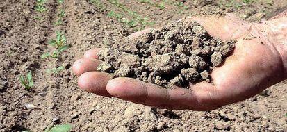 Allarme siccità in Italia: Umbria in pericolo