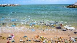 5 modi per salvaguardare i nostri mari
