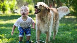 7 motivi per cui ogni bambino dovrebbe avere un amico a quattro zampe
