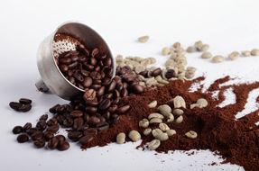 Fondi di caffè: 14 usi per la casa e la bellezza