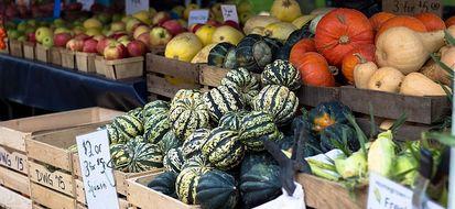 Depurare l'intestino con 8 alimenti della dieta autunnale