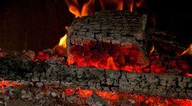 7 modi per utilizzare la cenere del caminetto