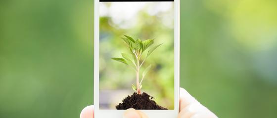 Le 6 app per essere cittadini sostenibili