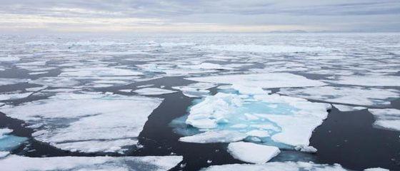 16 anni di divieto di pesca per proteggere l'Oceano Artico