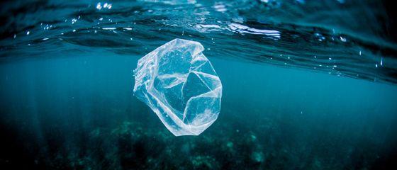 #CleanSeas: 4 idee originali per lottare contro la plastica