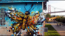 Street Art ecologica