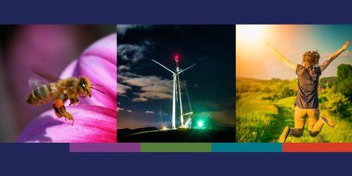 Immagini copertina del rapporto sullo stato dell'ambiente in europa.