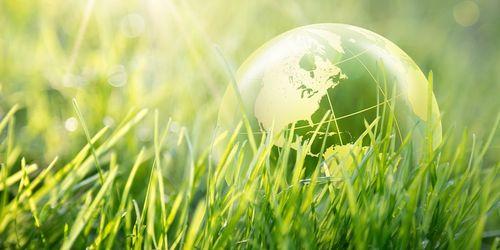 politica e ambiente