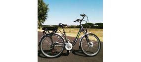 noleggio e-bike (adulti)