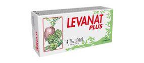 Levanat