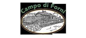 Olio extravergine biologico Campo di Forni