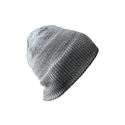 Official Reversible Beanie