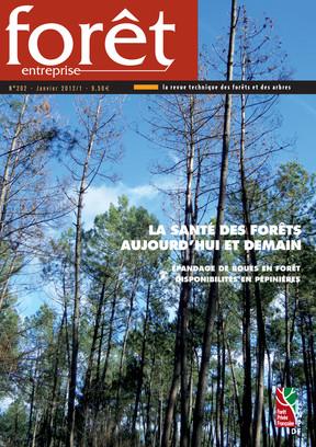 Forêt-entreprise n°202