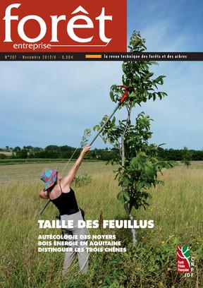 Forêt-entreprise n°207