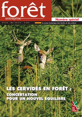 Forêt-entreprise n°210