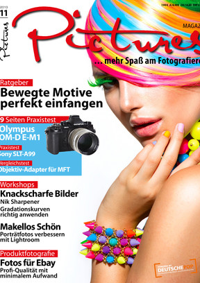 Pictures Magazin 11/2013
