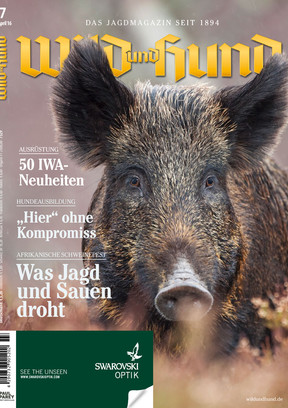 WuH 07/2016