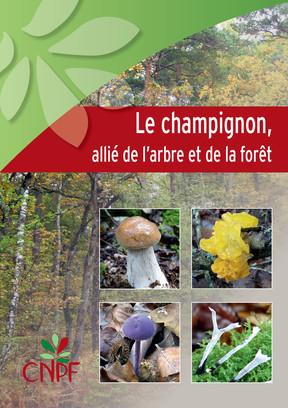 Le champignon, allié de l'arbre et de la forêt (version numérique)