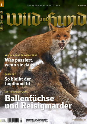 WuH 01/2018