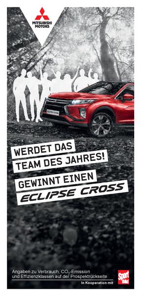Flyer Team-des-Jahres
