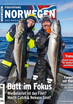 Leseprobe Norwegen 11