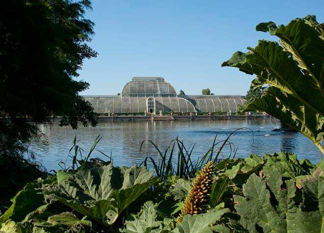 Kew Gardens Greenhouse River View