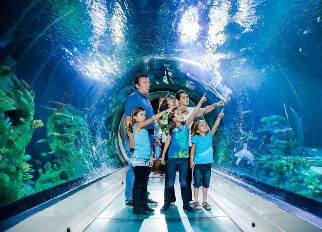 London Sea Life Aquarium Tour Tickets