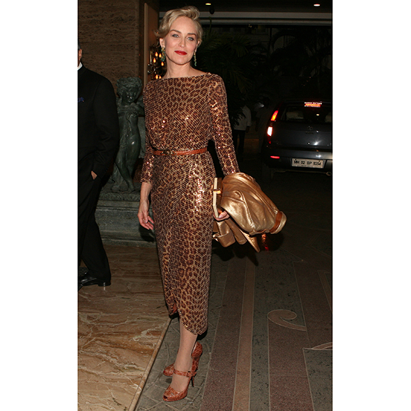 sharon stone red slinky gown