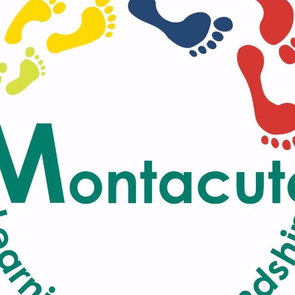 Montacute Trust School - Poole