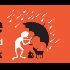 Rain Rescue