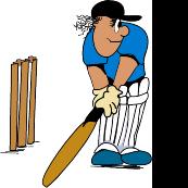 Barnards Green Junior Cricket