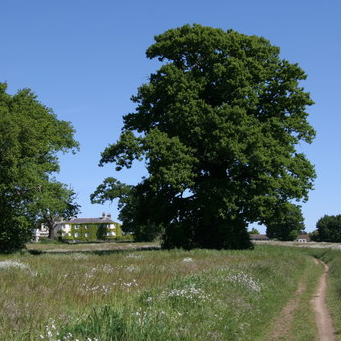 Catton Park Trust