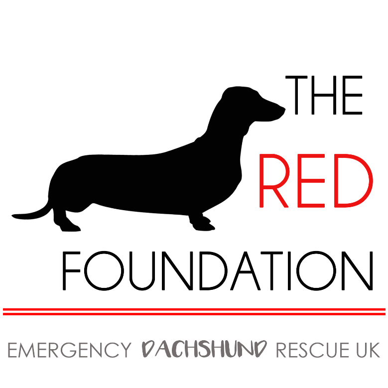 The Red Foundation - Emergency Dachshund Rescue UK