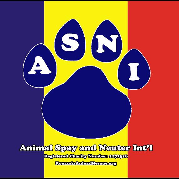 Animal Spay Neuter International