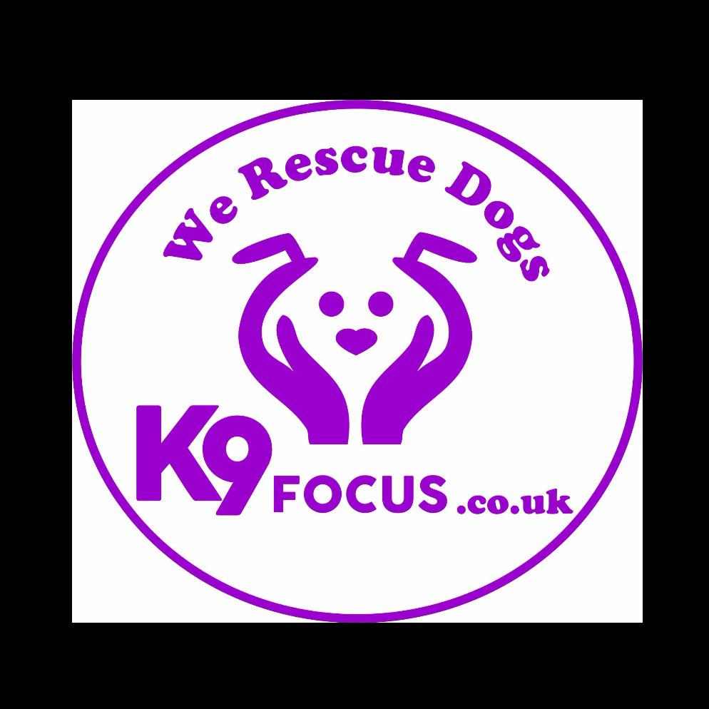 K9focus Dog Rescue