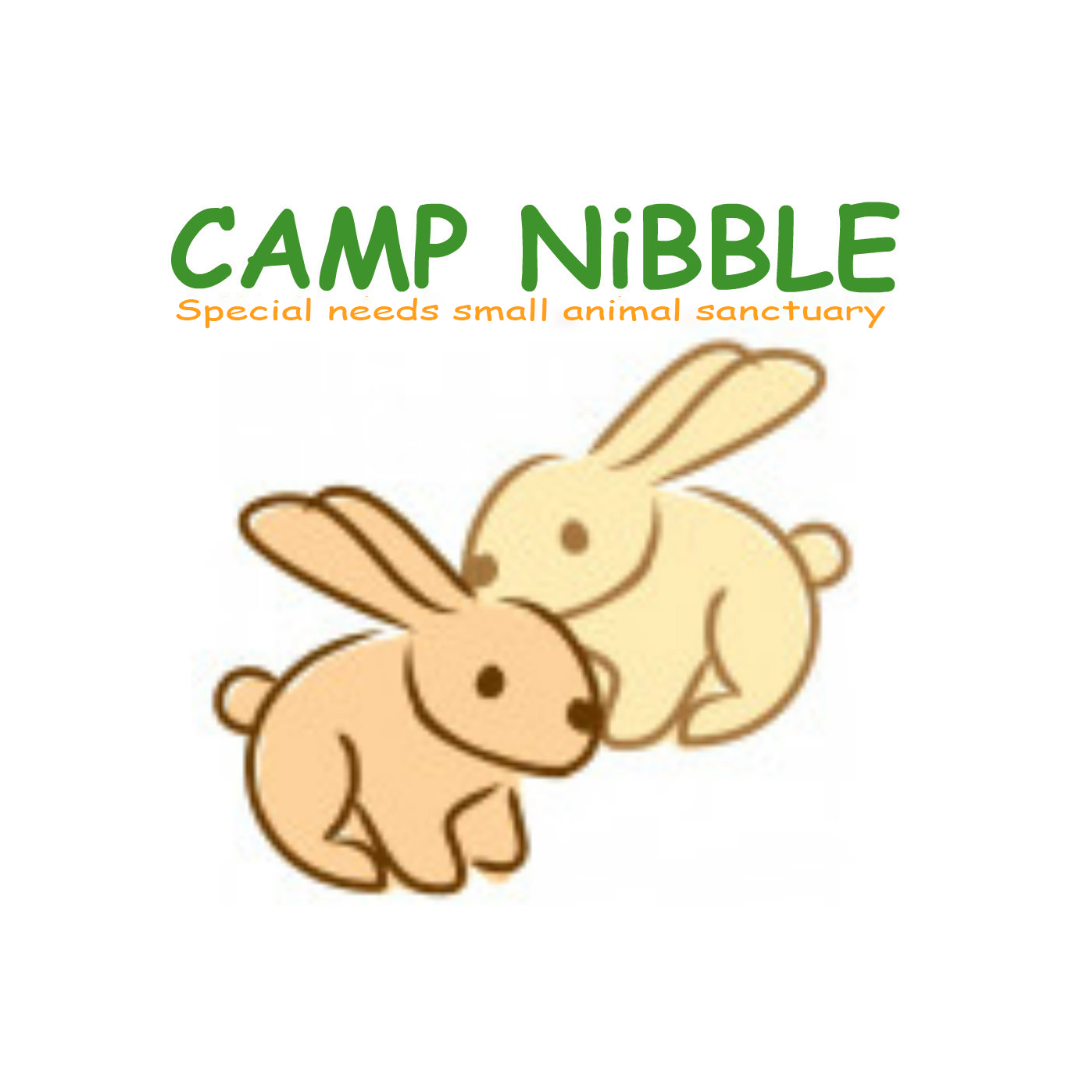 Camp Nibble