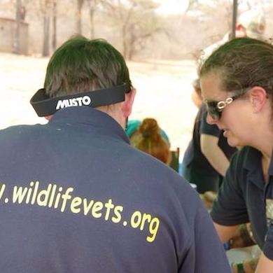 Wildlife Vets International