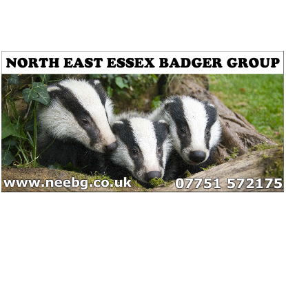 North East Essex Badger Group