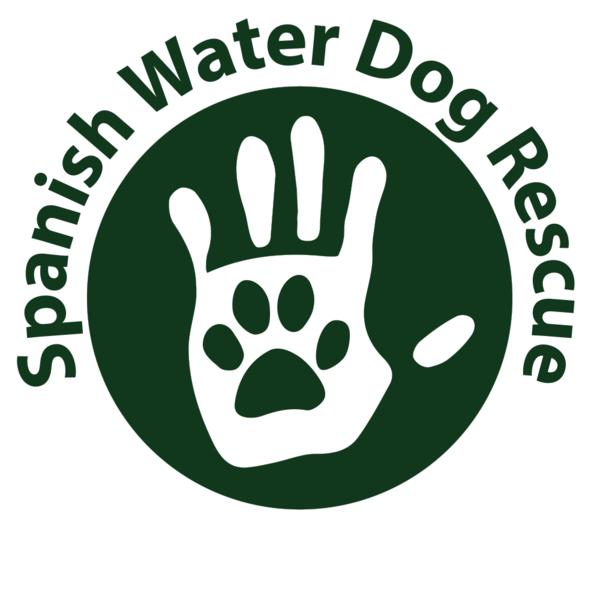 Spanish Water Dog Rescue UK