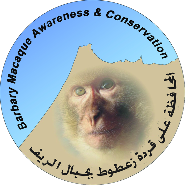 Barbary Macaque Awareness & Conservation (BMAC)