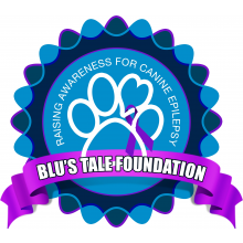 Blu's Tale Foundation