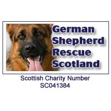 German Shepherd Rescue Scotland